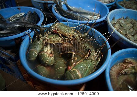 Seafood At Local Market In Goa, India