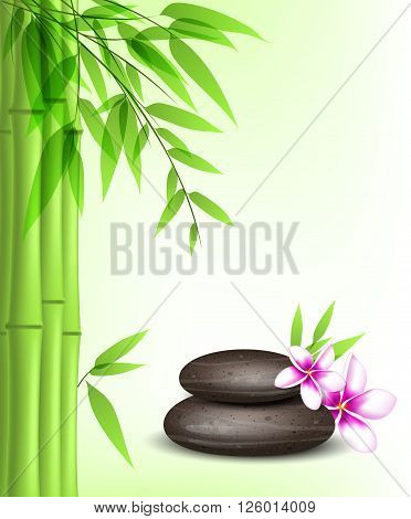 Vector background with green bamboo spa stones and tropical flowers.
