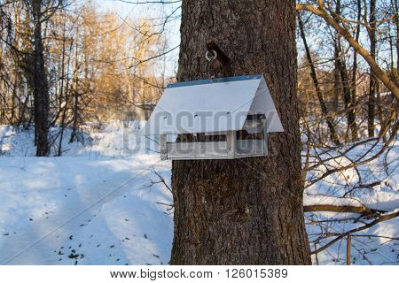metal bird feeder in the park in winter