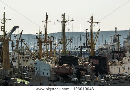 fishing vessels are in the port of Vladivostok