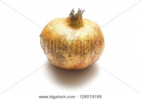 Brown pomegranate fruit isolated on white background.