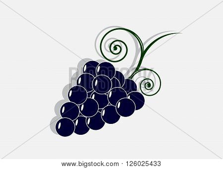 icon grapes.  A cluster of blue grapes with a green stalk