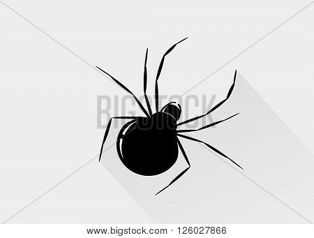 icon spider. A silhouette of a black spider on a gray background