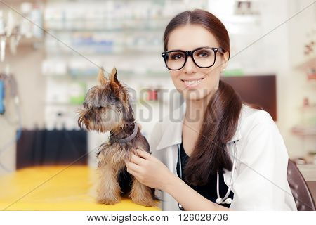 Young Veterinarian Female Doctor with Cute Dog