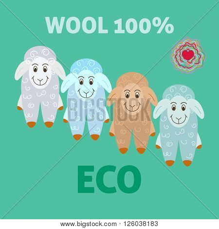 Sheep wool eco felting concept. Vector illustration of advertising sheep wool.