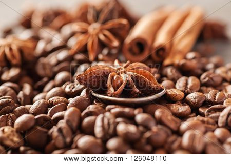 Coffee beans cinnamon and star anise closeup selective focus
