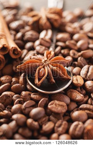 Coffee beans cinnamon and star anise in silver spoon closeup selective focus vertical