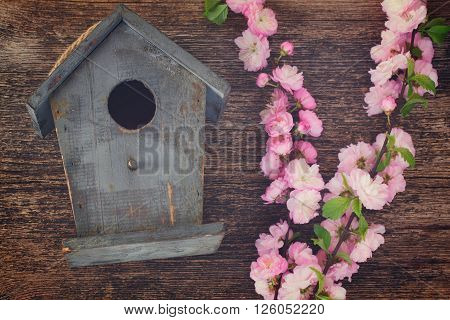 fresh cherry twigs with pink   flowers  and birdcage on wooden background, retro toned