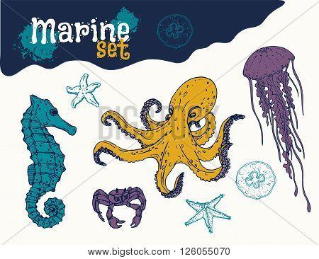 Marine life set hand drawn. Colored octopus, jellyfish, crab, starfish and sea horse. Vector
