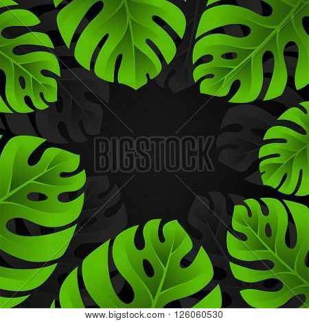 Tropical palm tree frame. Monstera leaves background. Vector card with copy space.