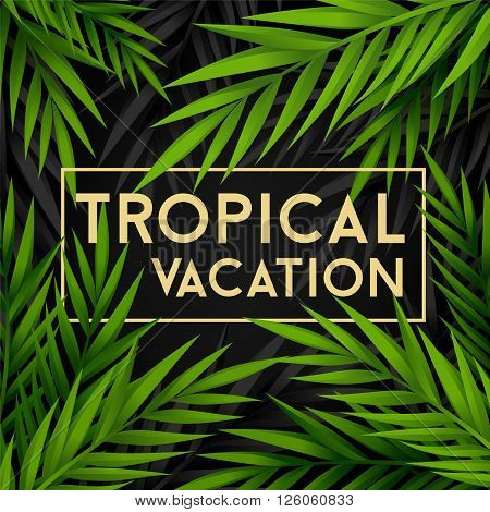 Tropical vacation background with jungle palm leaves.