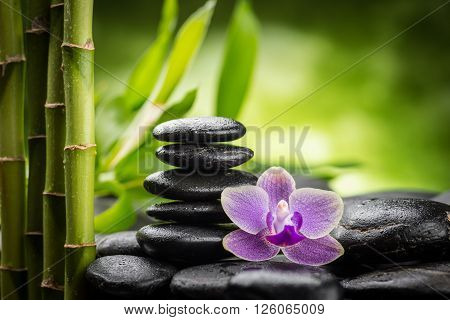 zen stones, Feng Shui, Nature, Composition, Horizontal, Extreme Close-Up