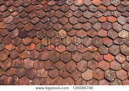 old roof shingles texture for a background