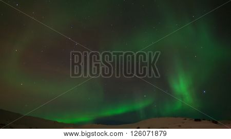 Northern light or aurora borealis dancing in the sky in Iceland