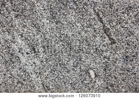 Monolith surface from the gray natural processed granite