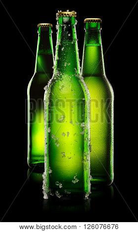 Green Bottles Of Beer
