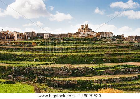 Panorama view on fields and St. George's Basilica. Gozo island Malta.