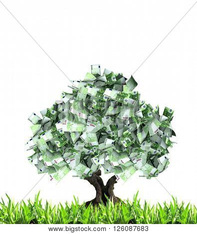 3d money tree with euro banknotes and green grass. Isolated on white background