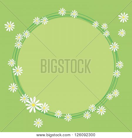 Lovely frame with flowers of camomile, green background