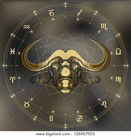 Golden bull zodiac Taurus sign for astrological predestination and horoscope