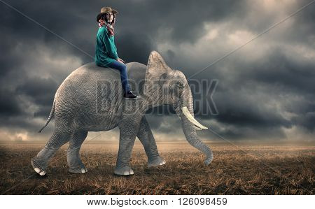 The beautiful woman rides elephant on field.