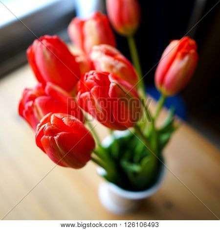 A bouquet of tulips in a flower vase