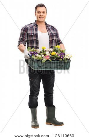 Vertical shot of a young guy holding a plastic crate with different flowers in it isolated on white background