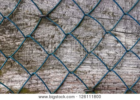 Diamond fence nailed on wood panel. Close-up for background.
