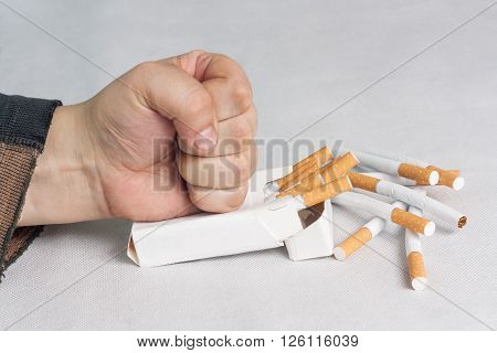 Quit smoking now. Man destroying a pack of cigarettes isolated on white background
