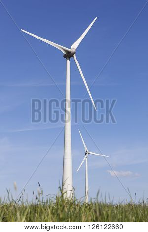 wind turbines in the dutch province of flevoland with grass and blue sky in sunny wheather.