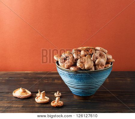 Edible Orange Mushrooms - Saffron Milk Cap.
