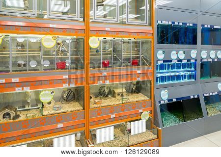Moscow, Russia - April 16.2016. The rats and birds in a Four paws pet store