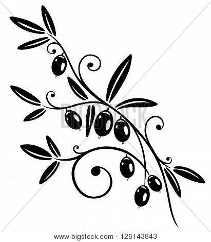 Olive branch, Mediterranean cooking, black vector design.
