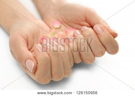 Woman hands with beautiful rose petals on white background, close up