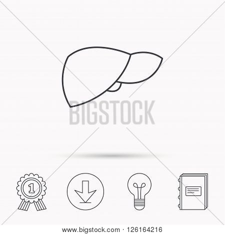 Liver icon. Transplantation organ sign. Medical hepathology symbol. Download arrow, lamp, learn book and award medal icons.
