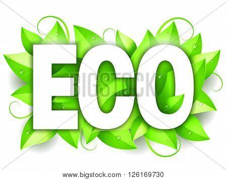 White Eco word on fresh green leaves
