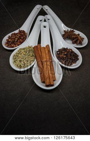 Five Spice With Cinnamon Stick Focus