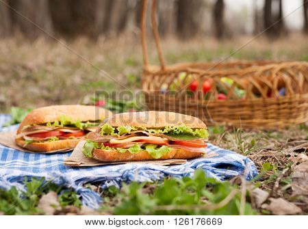 Ciabatta sandwich lifestyle picnic lunch with vegetables, bacon, salad, cheese, tomatoes and onion