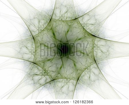Abstract Fractal Patterns And Shapes. Fractal Texture For Prints.