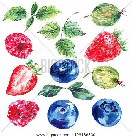 Set of watercolor fruits and berries isolated on a white background, separately leaves, strawberries, gooseberries, blueberries, raspberries, summer eco food illustrations