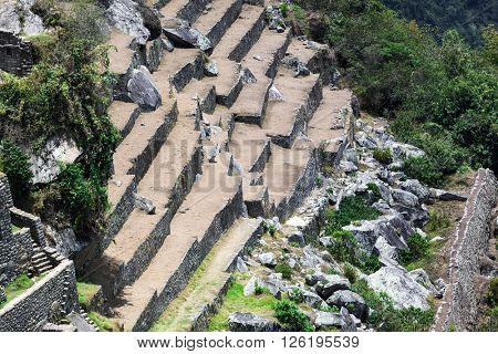 old terraces and ruins in Machu Picchu