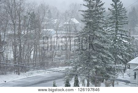 Looking down on a snow covered road within Torrington Connecticut during a winter storm as snow coats everything.** Note: Visible grain at 100%, best at smaller sizes