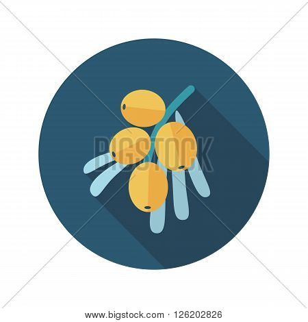 Branch of sea-buckthorn berries flat icon. Berry fruit. Vector illustration eps 10