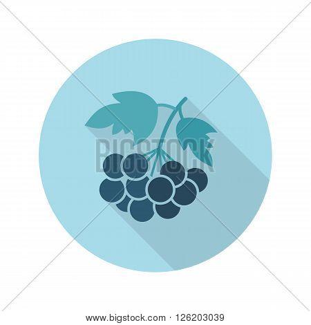 Rowan branch flat icon. Berry fruit. Vector illustration eps 10