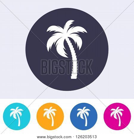 Vector single palm tree icon on colorful buttons