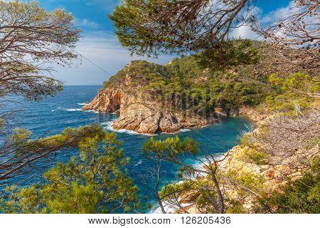 Aerial view of Cala Pola bay, coast of the Balearic Sea near Tossa de Mar, in the summer morning, Costa Brava, Catalunya, Spain