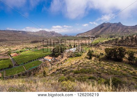 Landscape on the island Tenerife with blue sky.