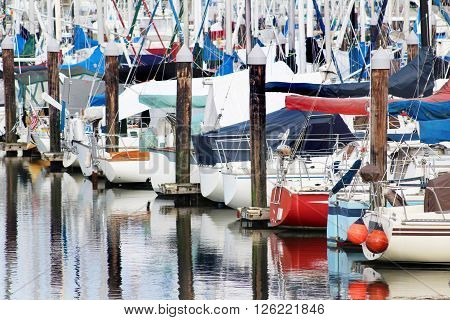 Sailboats in moorage with pilings and their reflections.