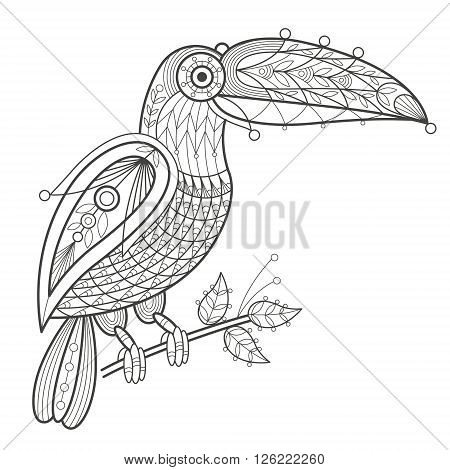 Vector illustration decorative toucan on white background. Fashion trend of adult coloration. Bird toucan vector with elements oriental motif Turkish cucumber. Black and white. Modern vector design.