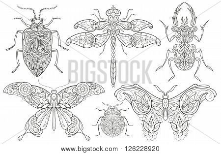 Set vector design elements linear. Illustration isolated decorative images of insects on white background. Insects beetles butterflies and dragonflies. Template coloring for adults. Natural motifs.